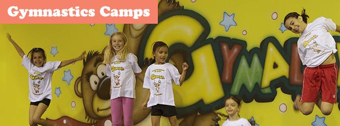 gymnastics_camps